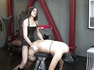 Strapon added to white mule cum